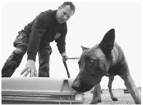 Canine Substance Detection
