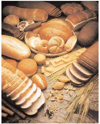 Carbohydrates - effects, food, nutrition, body, diet, absorption,