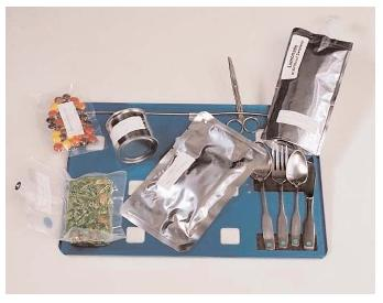 what did astronauts eat in space - photo #41